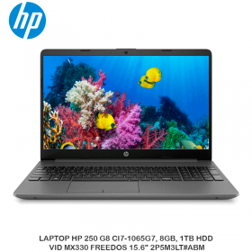"LAPTOP HP 250 G8 CI7-1065G7, 8GB, 1TB HDD, VID MX330 FREEDOS 15.6"" 2P5M3LT ABM"